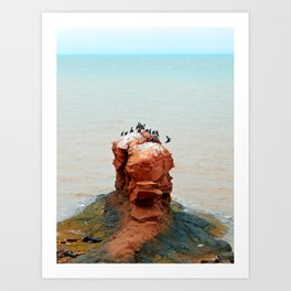Cormorants on Red Sandstone Rock Art Print