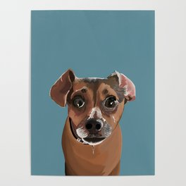 Another Cute Pup : Miss Molly Poster