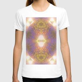 Shiny egg /segmentation T-shirt