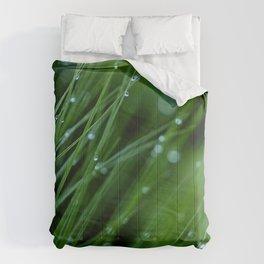 Dreamland Comforters