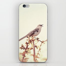 Mockingbird Bird Photography, Mocking Bird on Tree Branch, Nature Photograph iPhone Skin