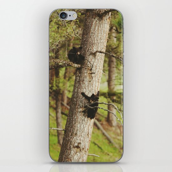 Climbing Cubs iPhone & iPod Skin