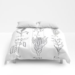 Grains and Cereal Plants Study Design Comforters