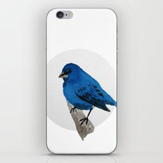 Messenger 004 iPhone & iPod Skin