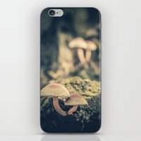 mushrooms iPhone & iPod Skins featuring mushrooms by Koka Koala