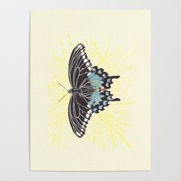 Small Spicebush Swallowtail Poster