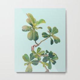 Tropic Metal Print