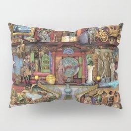 The Museum Shelf Pillow Sham