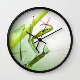 La Dame Verte Wall Clock