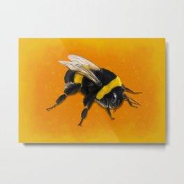 Fuzzy Bumblebee Metal Print