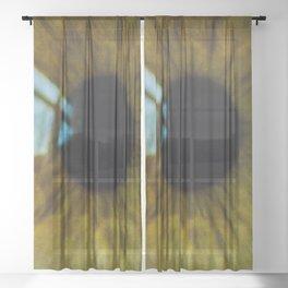 Void    Sheer Curtain