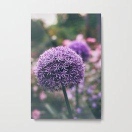 add some purple Metal Print