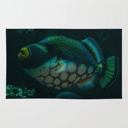 Polka Dot Fish Rug