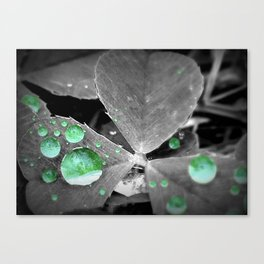 Luck of the Rain Canvas Print