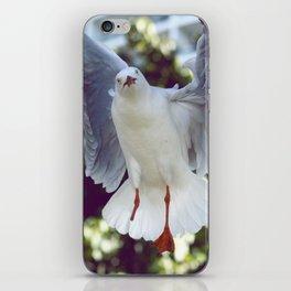 Peggy Gull iPhone Skin