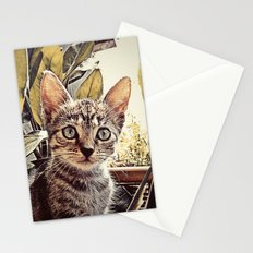 Mouser Stationery Cards