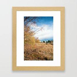 Lake Pukaki (2) Framed Art Print