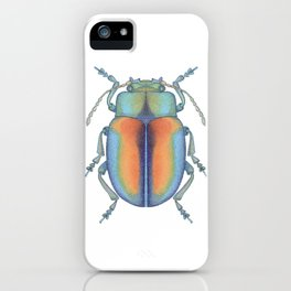 handmade *Chrysolina fastuosa* pointillism Insect illustration - dot joe iPhone Case