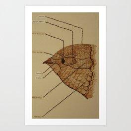 Wing Bird 3 Art Print