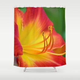 Ruby Spider Day Lily Shower Curtain