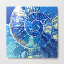 madagascarblue Metal Print