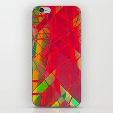 Juxt 1 iPhone & iPod Skin