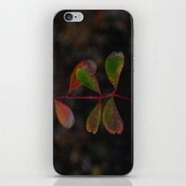 November in Reykjavík iPhone Skin