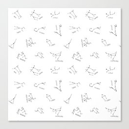Simple Constellations Canvas Print