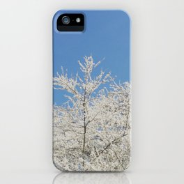 White blossoms in Stuttgart, Germany iPhone Case