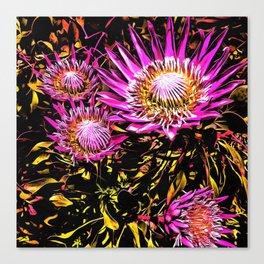 King Proteas Canvas Print