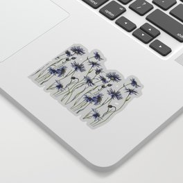 Blue Cornflowers, Illustration Sticker