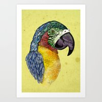 parrot Art Prints featuring Parrot by SilviaGancheva