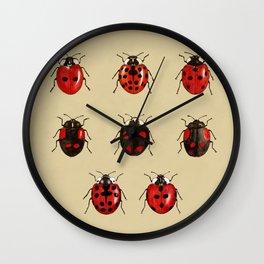 Coccinellidae entomology studies Wall Clock