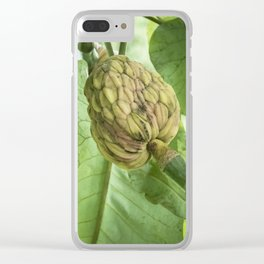 Bigleaf Magnolia Fruit Clear iPhone Case