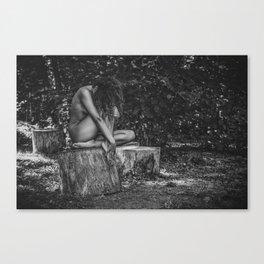 Dany Canvas Print