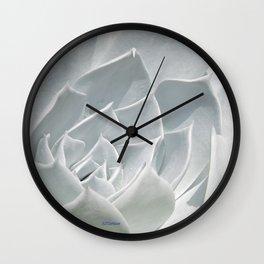 Succulent in the Sun Wall Clock