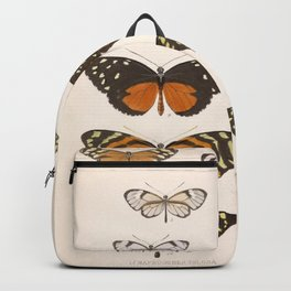 Vintage Scientific Anatomical Insect Butterfly Illustration Vintage Hand Drawn Art Backpack