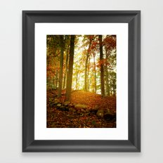 Autumn Woods with Stone Wall Framed Art Print