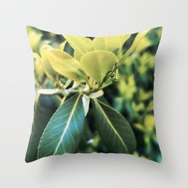 Fortune's Spindle Throw Pillow