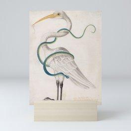 Heron Encircled by a Snake, Maria Sibylla Merian, 1700 Mini Art Print