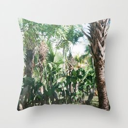 Mexican Palms Throw Pillow