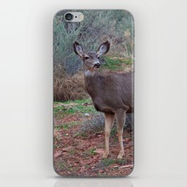 Zion Deer iPhone Skin