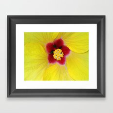 Yellow flower ## Framed Art Print