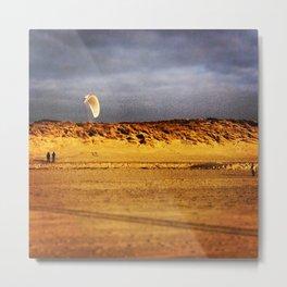 Dune wing Metal Print