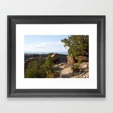 Desert Trail Framed Art Print