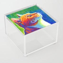 Rainbow Cat Portrait Acrylic Box