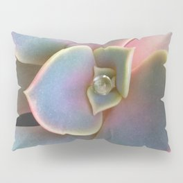 Succulent Dew Drop Pillow Sham
