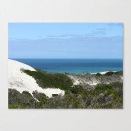 Sand Dune Bush  Ocean Coastal Landscape, De Hoop South Africa Canvas Print
