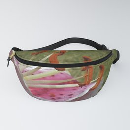 Extension Fanny Pack