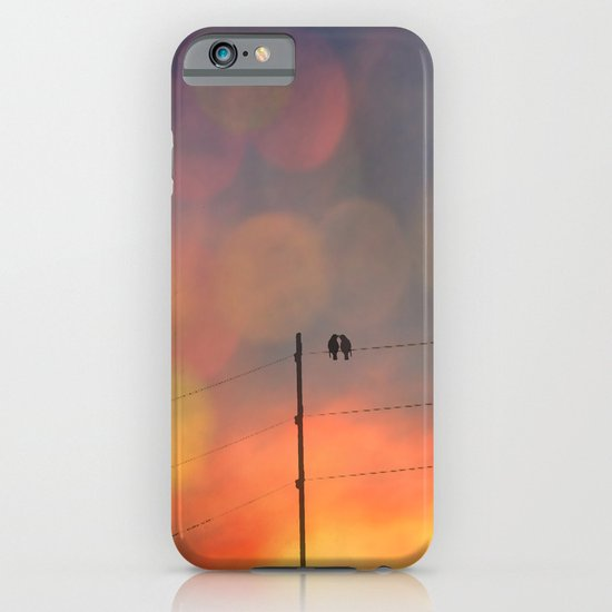 Love birds in the sunset iPhone & iPod Case